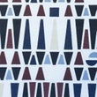 [S048R-61999] [S048R] Printed Canvas (Geometric Figures)